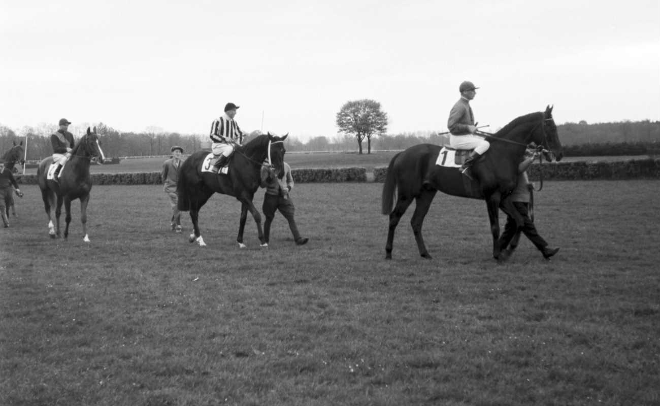 Pria yang membimbing joki menunggang kuda sebelum balapan