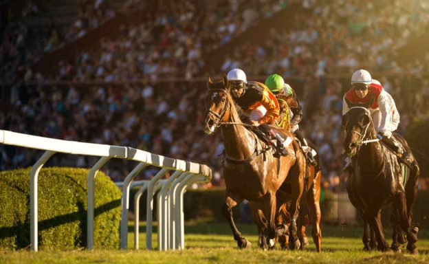 Two jockeys during horse races on his horses going towards finish line