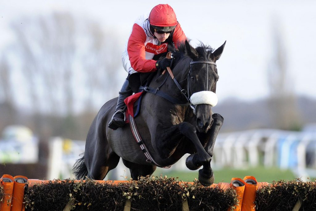 Big Buck's in action on the way to one of many Cheltenham Festival wins